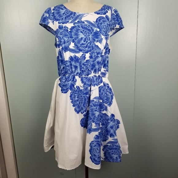 bailey blue Dresses & Skirts - Blue Roses and white dress size XL  -B1